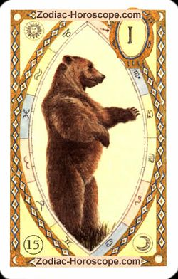 The bear, monthly Love and Health horoscope July Virgo