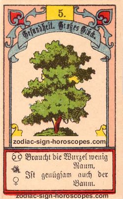 The tree, monthly Virgo horoscope January