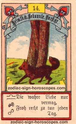 The fox, monthly Virgo horoscope October