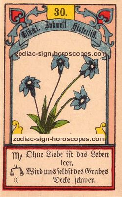 The lily, monthly Virgo horoscope January
